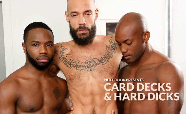 Great paid gay website to get some amazing gay flicks