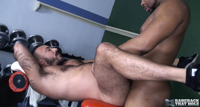 greatest pay porn site for gay lovers