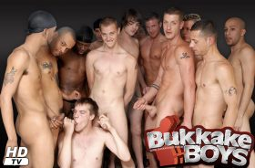 Among the best pay xxx sites offering top notch hardcore gay scenes